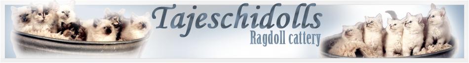 Ragdollcattery tajeschidolls